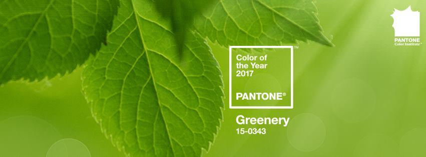 pantone-mau-cu%cc%89a-na%cc%86m-2017