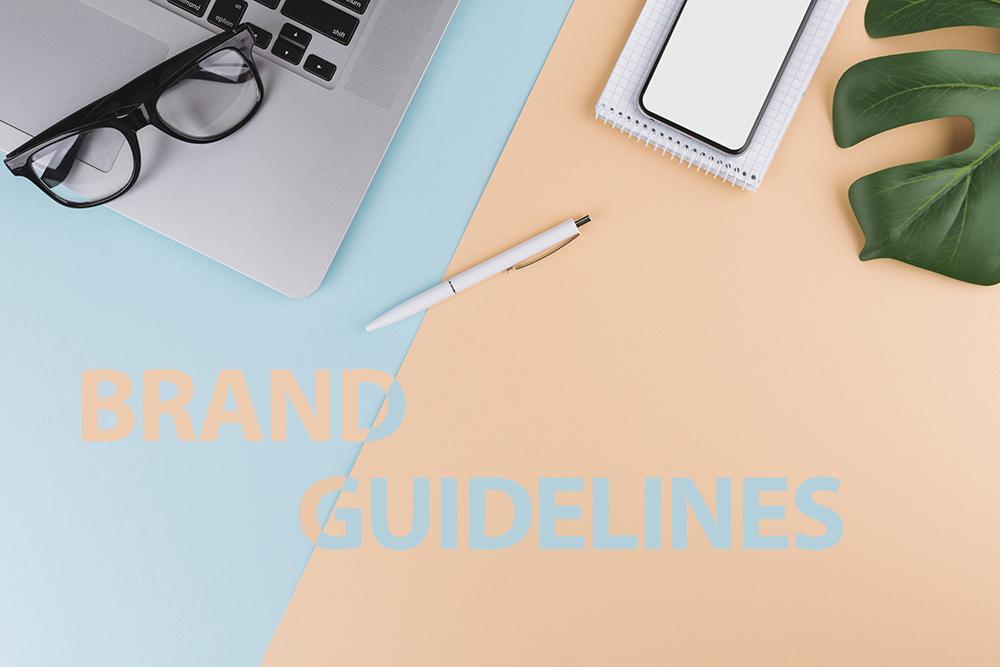 Brand guideline là gì (Tại sao phải có)