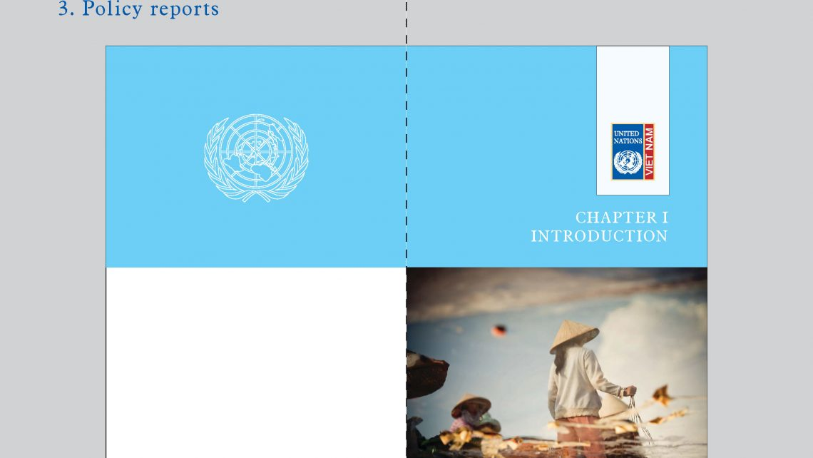 UNDP Guideline_1_Page_17