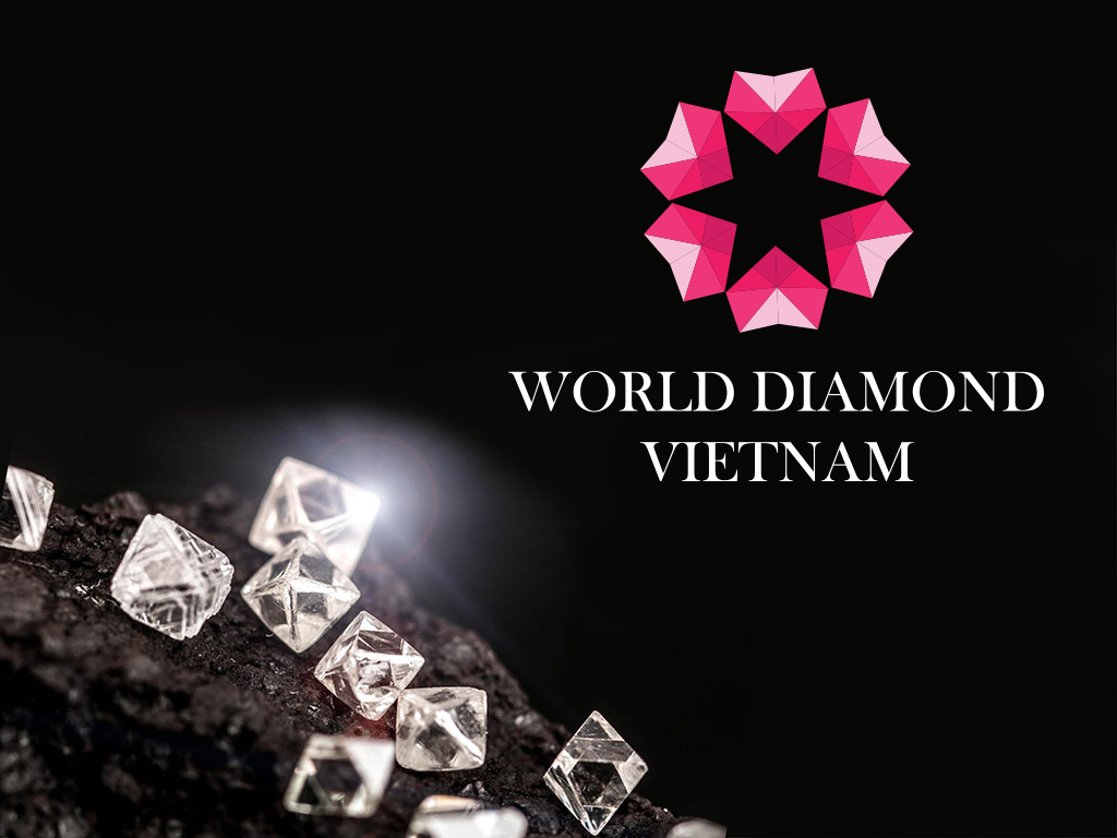 Thiet ke logo World Diamond 6
