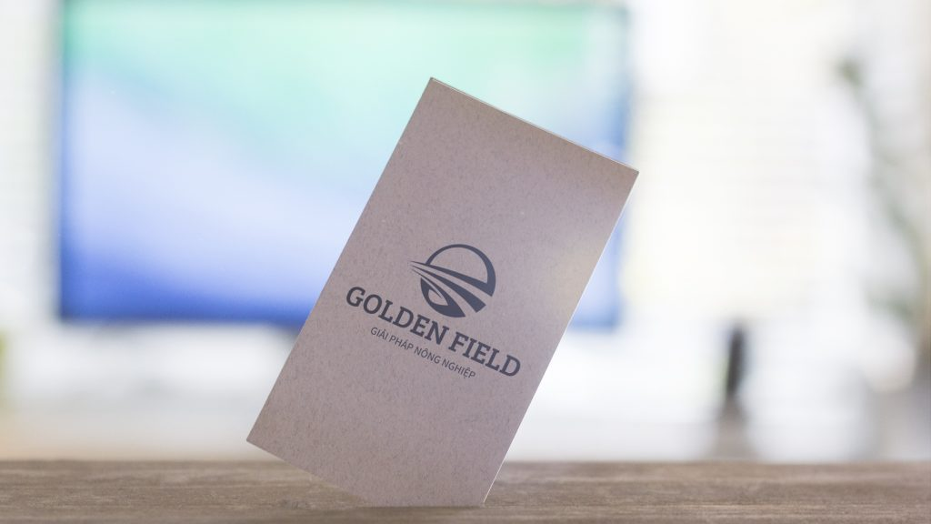 thiet-ke-logo-golden-field1