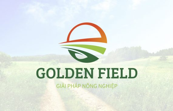thiet-ke-logo-golden-field4
