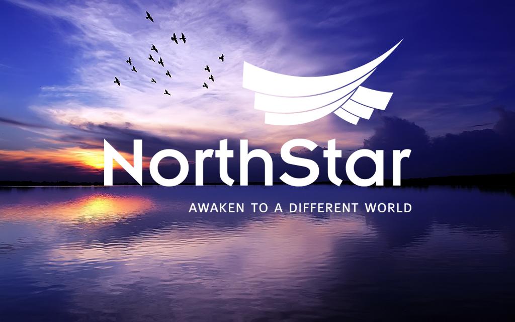 Thiet ke logo Northstar 3