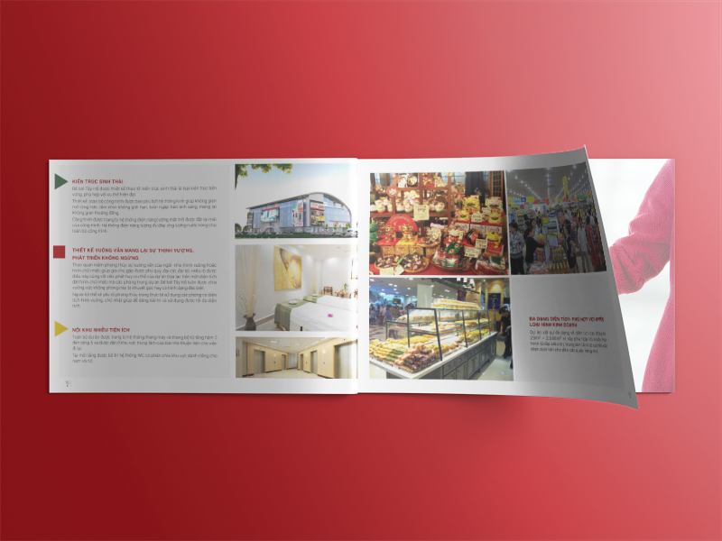 Thiet ke profile Brochure HDB-01