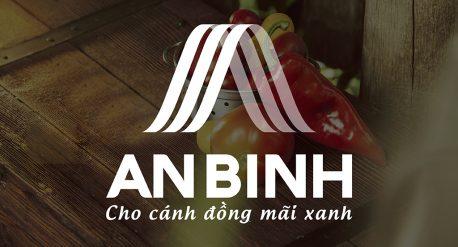 Thiet ke nhan dien thuong hieu An Binh-04