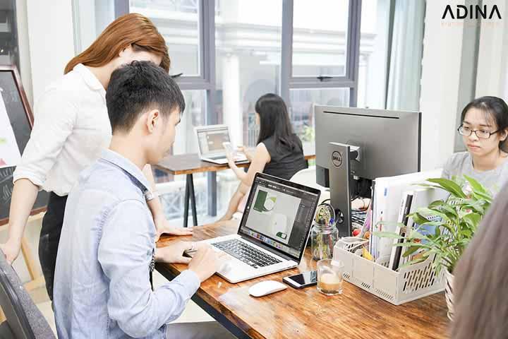 Thiết kế hồ sơ năng lực giá rẻ tại Adina Việt Nam