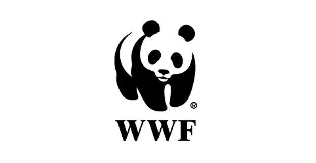 Logo WWF lấy biểu tượng gấu trúc - Hình ảnh đẹp để làm logo (Nguồn: Sưu tầm)